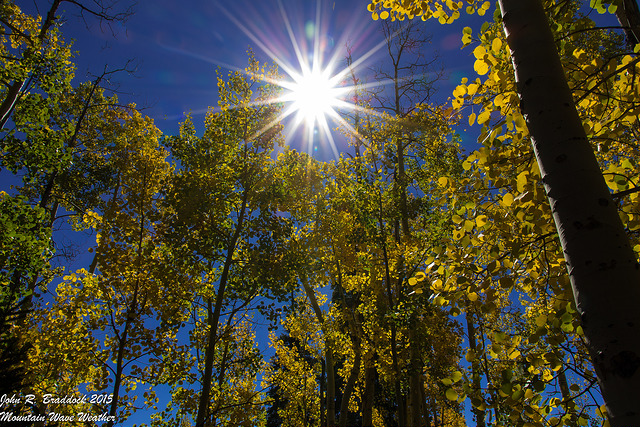 Fall or Summer this week in Colorado? You decide…
