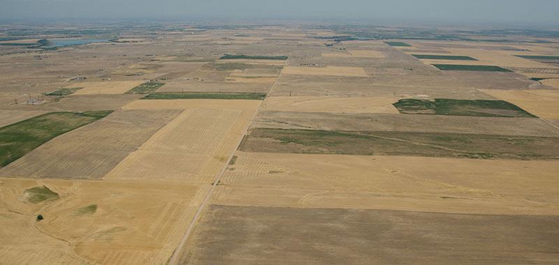 "Castle Rock/Palmer Divide Area Enter Stage 1 ""Moderate Drought"""
