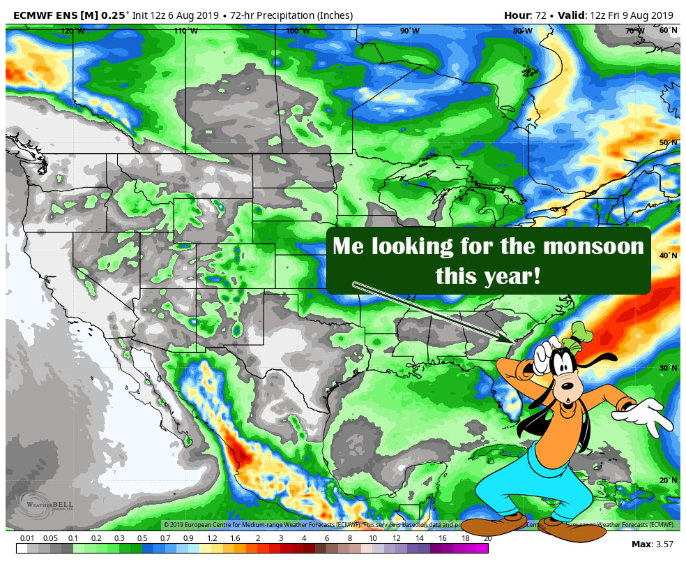 Colorado Monsoon 2019… Missing In Action?