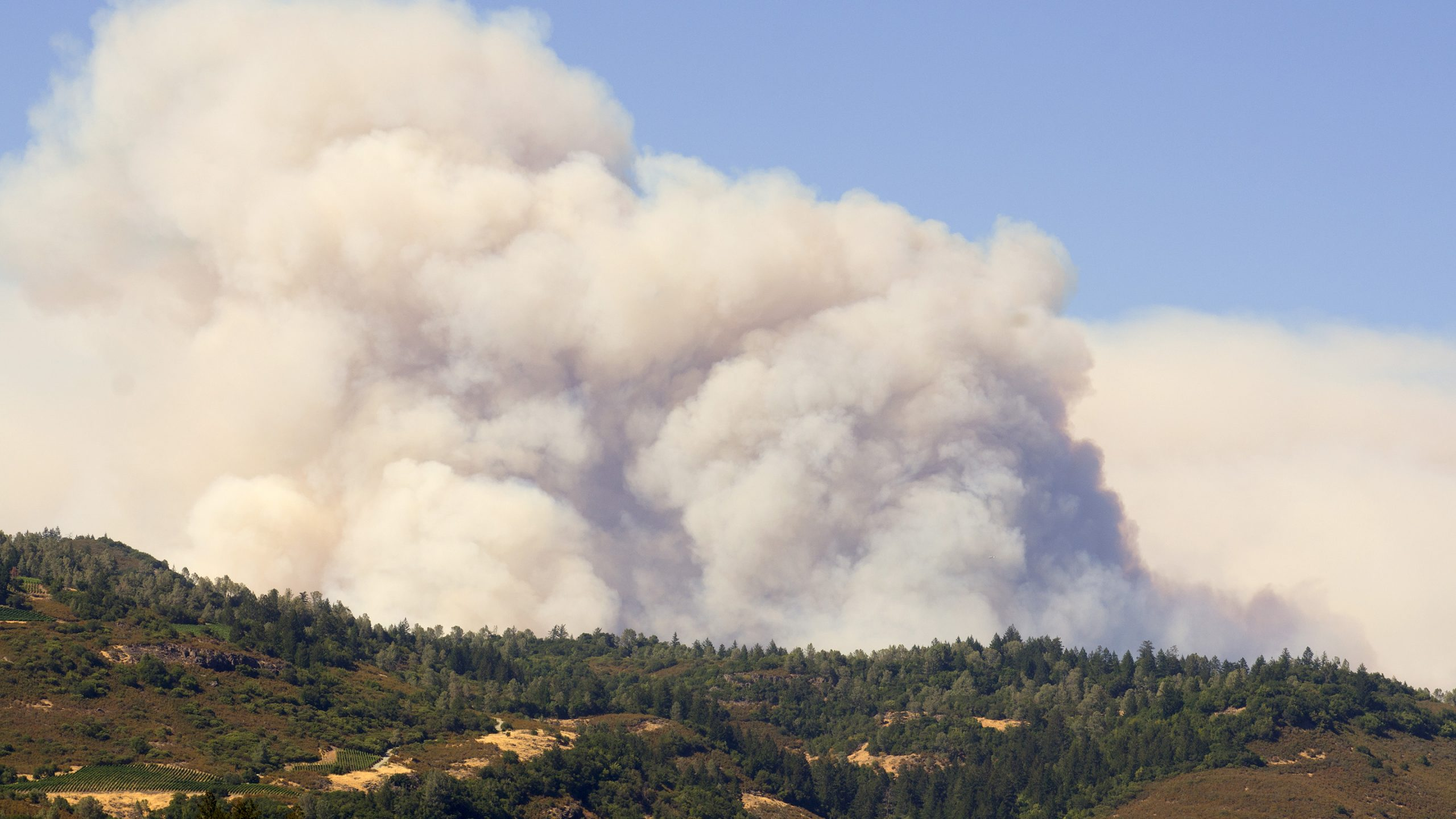 High Temperatures, High Winds, High Fire Danger Continues