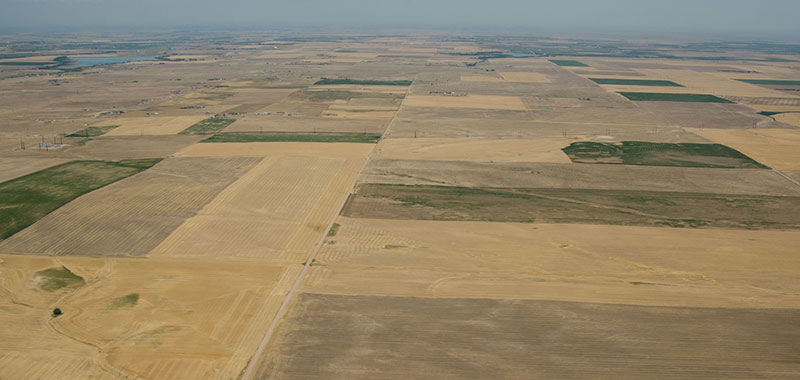 Colorado Front Range Sees Increasingly Worse Drought Conditions